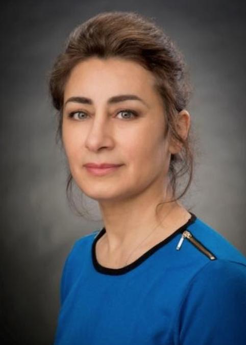 Doctor Sepideh.